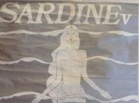 SARDINE v at Stranded